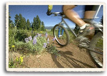 Northern New Mexico offers Mountain biking trails for all levels of skill. Soft rolling hills and flat mesa make for fast, fun rides with sweeping vistas of the Sangre de Cristo Mountains